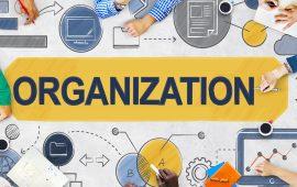 Организации
